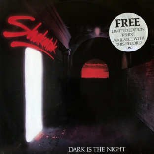 "Shakatak ‎- Dark Is The Night (12"") (VG-/G-VG)"
